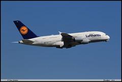 AIRBUS A380 841 Lufthansa D-AIMJ 073 Frankfurt juin 2019 (paulschaller67) Tags: airbus a380 841 lufthansa daimj 073 frankfurt juin 2019