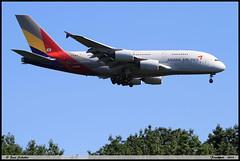 "AIRBUS A380 841 ""ASIANA AIRLINES"" HL7640 230 Frankfurt juin 2019 (paulschaller67) Tags: airbus a380 841 asianaairlines hl7640 230 frankfurt juin 2019"