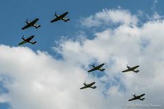 7 Hawker Hurricanes in formation (DrAnthony88) Tags: uk england unitedkingdom aviation united bedfordshire kingdom warbirds hawkerhurricane shuttleworthcollection nikond500 historicaircraft oldwardenaerodrome shuttleworthmilitarypageant afsnikkor70200mmf28efledvr propellerpoweredaircraft