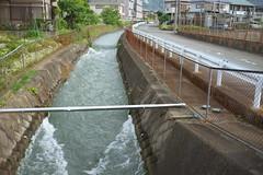 Oi#2 (tetsuo5) Tags: 足柄上郡 大井町 ashigarakamigun ooimachi oimachi α7ⅱ noktonclassic35mmf14emount 酒匂堰
