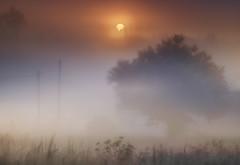 Recesende 8826456 (Noel F.) Tags: a7r a7riii voigtlander 110 apo teo neboa fog mist galicia mencer sony