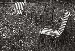 groundhog13 (dougwoods12345) Tags: places ontario timmins groundhoglake