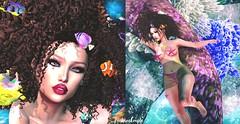 ဣLook575 (Fashion Couple) Tags: queenz vanityhair mjn