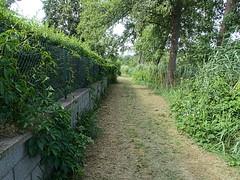 Zeesen_e-m10_1017048605 (Torben*) Tags: rawtherapee olympusomdem10 olympusm12mmf20 brandenburg urlaub krummersee krummensee weg path fence zaun grün green