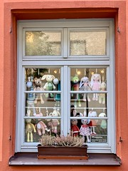 Window on Nuremberg: watching us watching you! (kimbar/Thanks for 4.5 million views!) Tags: nuremberg germany bavaria shopwindow window flowerbox toyshop dolls
