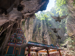 Taking Flight || Batu Caves (Elia Locardi) Tags: travelphotography landscape batu caves elialocardi moments time kualalumpur se asia