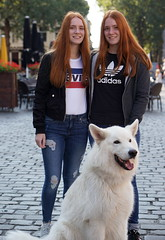 "red twin, white dog (e³°°°) Tags: leonie maja swiss white shepherd ""redhead day"" rood roodharigendag red retratos rouge ros roodharig rot rothaarig hair redhead days 2017"" ""roodharigendag rhd2017 pelirrojo portrait portraiture posing retrato rosso breda nl lady woman mademoiselle female femme frau mädchen girl girls glimlach ginger lach smile sorria sonrisa sourire valkenbergpark stunning gals women vrouw ragazze красный рыжий ryzhiy pelirroja redhaired mc1r"