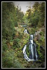 Les cascade de Triberg (Frédéric Pagès) Tags: badewurtemberg triberg forêtnoire allemagne cascade chutedeau forêt rivière nature forest waterfall wasserfall kaskade fluss natur schwarzwald