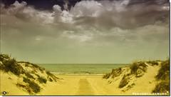 The Beach (Antonio Zamora) Tags: antoniozamora amarillo yellow paisaje paisajes vacaciones verano spain sky sol sun summer beach playa mar mediterraneo mediterráneo mediterranean landscape landscapes clouds cloud canon ixus nubes nube nature natura naturaleza weather