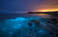 BLUE RINSE (Gareth Mon Jones) Tags: bioluminescent plankton wales anglesey penmon seascape