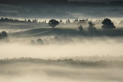 _DSC5924 (marleenhouben) Tags: nieudan cantal pébru mist fog brume