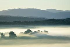_DSC5837 - Version 2 (marleenhouben) Tags: nieudan cantal pébru fog brume mist