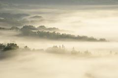 _DSC5861 (marleenhouben) Tags: nieudan cantal pébru mist fog brume