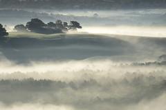 _DSC5929 (marleenhouben) Tags: nieudan cantal mist pébru fog brume