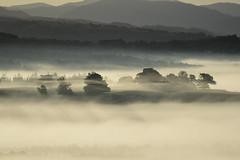 _DSC5920 (marleenhouben) Tags: nieudan cantal pébru mist fog brume