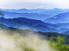 Blue mountains (memories-in-motion) Tags: friaul matajur blue landscape mountains alps alpen atmosphere clouds light mood gfx50r sigma 150mm techart green italy bokeh