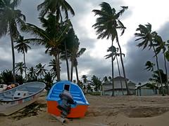 IMG_1550 (xd_travel) Tags: beachvacation puntacana dr 2010 newyeareve onthebeach caribbean hispaniola