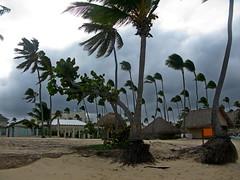IMG_1549 (xd_travel) Tags: beachvacation puntacana dr 2010 newyeareve onthebeach caribbean hispaniola