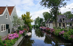 Broek in Waterland, the Netherlands (Ineke Klaassen) Tags: village broekinwaterland waterland nederland holland netherlands noordholland hortensia beschermddorpsgezicht dutch monument monumental inekeklaassen photography sony sonyphotographer sonyalpha sonyimages sonya6000 ned nl zoomnl 50mm hortensias hydrangea hydrangeas monumentstatus garden house houses water 2019 2550fav 25fav 25favs 25faves 300views