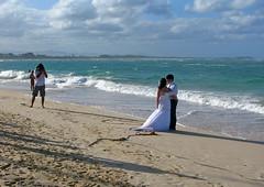 IMG_1569 (xd_travel) Tags: beachvacation puntacana dr 2010 newyeareve onthebeach caribbean hispaniola