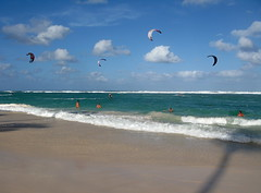IMG_1562 (xd_travel) Tags: beachvacation puntacana dr 2010 newyeareve onthebeach caribbean hispaniola