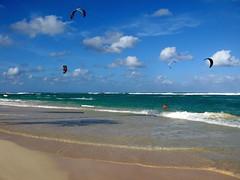 IMG_1561 (xd_travel) Tags: beachvacation puntacana dr 2010 newyeareve onthebeach caribbean hispaniola