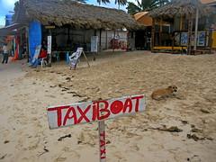 IMG_1548 (xd_travel) Tags: beachvacation puntacana dr 2010 newyeareve onthebeach caribbean hispaniola