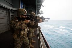 "Conducts Tactical Recovery of Aircraft & Personnel training aboard the amphibious assault ship USS Wasp (#PACOM) Tags: 31stmarineexpeditionaryunit battalionlandingteam 2ndbattalion 1stmarines combatlogisticsbattalion31 marinemediumtiltrotorsquadron265reinforced marinefighterattacksquadron121 commandelement groundcombatelement logisticscombatelement aviationcombatelement iiimarineexpeditionaryforce amphibiousassaultshipusswasplhd1 amphibioustransportdockussgreenbaylpd20 docklandingshipussashlandlsd48 7thfleet 31stmeu blt21 clb31 vmm262rein vmfa121 iiimef lhd1 lpd20 lsd48 okinawa japan marinecorps indopacific ready partnered lethal marineairgroundtaskforce magtf mv22bospreytiltrotoraircraft f35blightningii ch53esuperstallionhelicopter ah1zviperhelicopter uh1yhvenomhelicopter coralsea usindopacificcommand ""usindopacom"