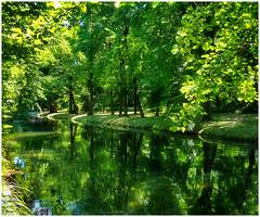still waters 2 (kurtwolf303) Tags: bäume kanal natur niederösterreich schlossparklaxenburg spiegelungen wasser österreich kurtwolf303 nature reflections water trees huawei austria loweraustria landschaft landscape