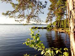 Озеро Таватуй (MediaUral) Tags: озеро таватуй свердловская урал ural lake russia