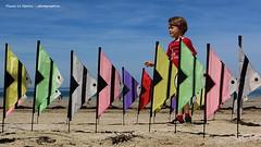festival vent pléneuf val andré 2019 (pascal3592) Tags: festival vent pléneufvalandré bretagne brittany