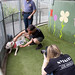 Animal Shelter Shoot