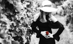 Julia (fun.photograph) Tags: portrait sonya7ii 85mm 18 blackandwithe rose