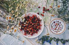 July flatlay (AzureFantoccini) Tags: summer flowers nature russia sonynex countryside plants garden flatlay berries strawberry chamomile stilllife