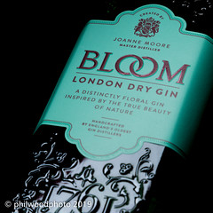 365-2019-190 - Bloom (phil wood photo) Tags: 365 365colorfun 365colourfun 40 aqua bloom bottle color365 colour365 day190 gin jade july londondry singlestrobe turquoise