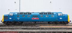 55019 @ Crewe (A J transport) Tags: class55 deltic 55019 royal highland fusilier diesel locomotive br blue crewedepot crewe display nikkon d5300 dlsr railway preservedmotivepower train