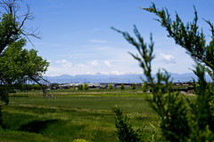 20180610_D3100_0079 (Mr.Lujan) Tags: clouds green lawns landscaped stoplights storms moisture moon lunar rockymountains therockies rockies snowcaps denver colorado downtowndenver denverbroncos oldschool classiccar latenight bowling red