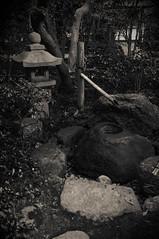 三の丸会館 (小川 Ogawasan) Tags: japan japon aichi toyohashi sannomaru tatami tea kodo 豊橋市 三の丸会館 豊橋公園