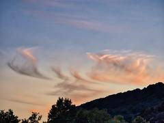 Whispy sunset (Nevrimski) Tags: