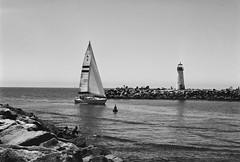 Santa Cruz , Ca (poavsek) Tags: harbor california boat sails water film fuji agfa 6x9 black white light house buoy