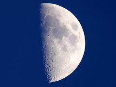 Half Moon (Nevrimski) Tags: half moon craters