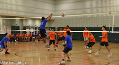 2018-19 - Volleyball (Boys) - Exceptional Senior Game -104 (psal_nycdoe) Tags: 2019volleyballboysvarsityexceptional 201819 nycdoe new york city department education climate school wellness mike michael haughton psal public schools athletic league metropolitan metropolitancampus campus metopolitan volleyball boys post season postseason exceptional senior game publicschoolsathleticleague nyc postseaon division high