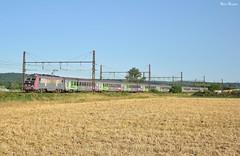 Intercités éco (Marc_135) Tags: bb26000 bb26017 corail carmi ic5756 etigny été plm lyon lyonparis train rail sybic champs bleu vert rose