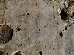 Calatrava la Vieja (santiagolopezpastor) Tags: espagne españa spain castilla castillalamancha lamancha medieval middleages moorish hispanomusulmán andalusí castle castillo chateaux grabado graffiti grafito barco sheep ciudadreal provinciadeciudadreal