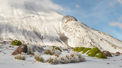 Taapaca volcano in snow (Andres Puiggros) Tags: d500 arica chile landscape nature nieve nikon snow travel web