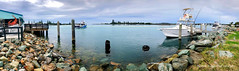 Tuncurry Fishermans Cooperative View over Cape Hawke Harbour, Tuncurry, NSW (Black Diamond Images) Tags: tuncurryfishermanscooperative view capehawkeharbour tuncurry nsw australia midnorthcoast phone landscape djiosmo osmohandheldstabilizer stabilizer djiosmomobile appleiphonex iphonexbackcamera iphonexpanorama appleiphonexpanorama shotoniphone