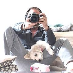 All for @leothecream ... bc... we love Leo & Zeus #althea ⚡️ #goldenretrievers (Alex Beattie) Tags: althea golden dog california westlake artisanbrandingcom