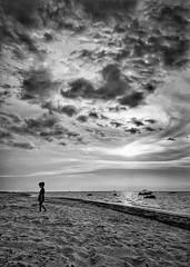 Horizon (Mister Blur) Tags: uaymitún yucatán méxico iphone xr iphoneography blackandwhite blancoynegro noireetblanc bw endofday journey beach side dusk sunset clouds gulfofmexico golfodeméxico verano summer horizon horizonte tycho snapseed rubén rodrigo fotografía paraelmuro