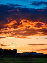 Hill of Allen (kckelleher11) Tags: 2019 40150mm ireland kildare olympus sunset allen curragh em1 f28 hill june mzuiko omd