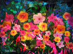 Tropical Melody (brillianthues) Tags: hibiscus palms colorful collage flowers floral nature garden photography photmanuplation photoshop